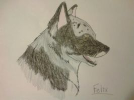 A drawing of Felix by Toothlesslover123