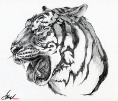 Tiger face by drawfluent