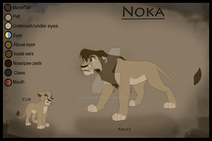Noka's Ref sheet by Splasher91