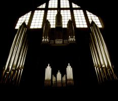 Orgel by crinitus