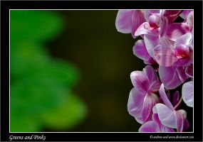 Greens and Pinks by Andrew-and-Seven