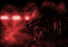 Xenomorph III-Code Red by ACKZ-TWISTED-ART