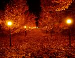 Autumn Night by RENCG