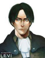 Lance Corporal Levi by cheesyporridge2121