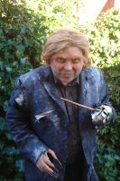 Peter Pettigrew / Wormtail cosplay 5 by Angelophile