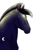 Reference 2 of 4 Cloudrunner64 by EmeraldTheWolf