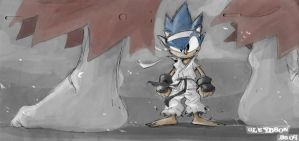 Ken VS Sonic by gureiduson