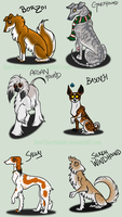 FCFS Sighthound Adoptables by RoseThornStables