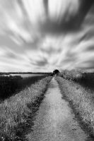Black and White Infrared Nature by MBHenriksen