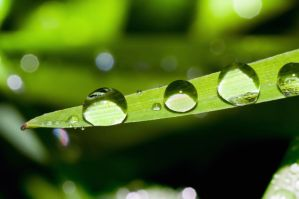 water drops 2 by Henxxx