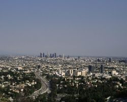 LA from Runyon Canyon by photoscot