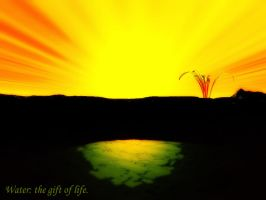 the gift of life by DarkRiderDLMC