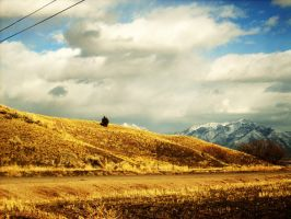 Rolling Hills by VirginiaRoundy