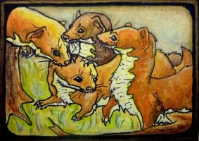 ACEO Least Weasels by Redwall151