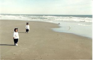 Two by Two at Myrtle Beach by gaston