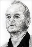 Bill Murray by raul-duke-05