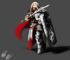 Commission: Paladin by PeterPrime