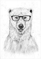Geek Bear by soltib
