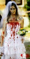 Zombie Bride by Didi-hime