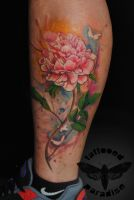 watercolor peony in progress by dopeindulgence