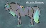 Malaveta Info Sheet - Mermaid Mutation by WinterGiraffe