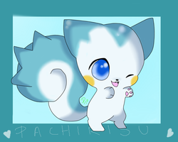 5pc: Example - Pachirisu by ToxiicClaws
