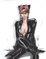 Catwoman Sept 24 2011 by Hodges-Art