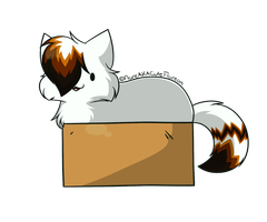 Boxiness by CuteFlare