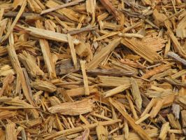 00022 - Wood Chips by emstock