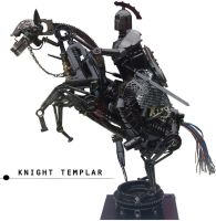 THE KNIGHT TEMPLAR by ironheartram