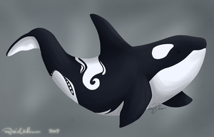 Orca Whale by RosieUnknown