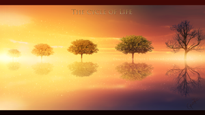 The cycle of life by GeneRazART