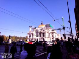 Bellas Artes by anggiew
