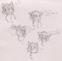 Five kitty faces and a circle by VotrePoison