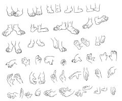 Feet and Hand study by Fyuvix