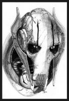 gENeraL_GrIEvOUs by joshua-tree