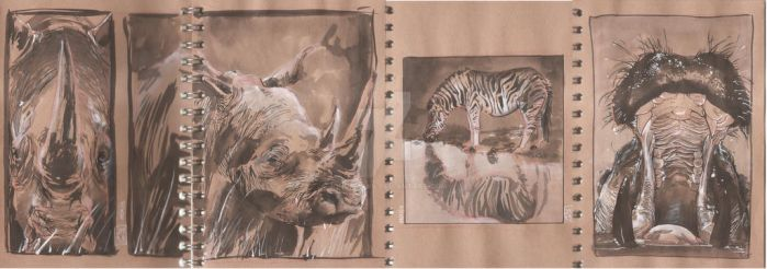 Animal warm up watercolour sketches by jonomarks