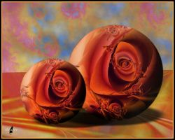 Rolling roses by theaver