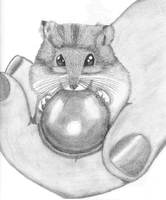 Have a hamster in hand by NightFever100