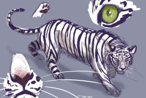 White tiger guy by tigon