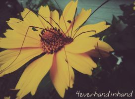 A Foot on Life by 4everHandInHand