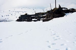 Footprints In The Snow by RedHeadLilith