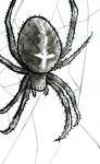 Inktober #4: Cross Spider by Saskle