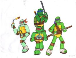 My TMNT Picture 30th Anniversary by InsideOutGirlKatie