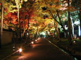 Autumn night of Kyoto by NismoWDY