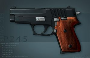 SIG P245 colors by cityofthesouth