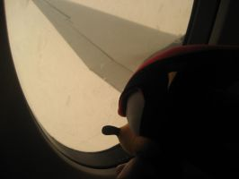 Shadow my airplane buddy by xxninjacookie