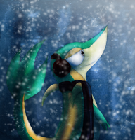 PKMN: And Winter Came by transylvaniandreams