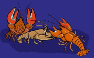 Crayfish invasion by crawdadEmily