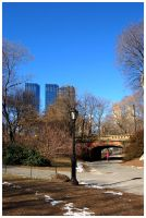 Central Park III by stolnicki